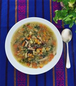 chicken_veg_soup